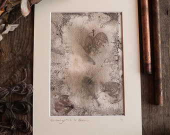 Original Eco Printed art, ready to frame in A4, handmade with Cotton paper, Eucalyptus and Beech Leaves. OOAK.