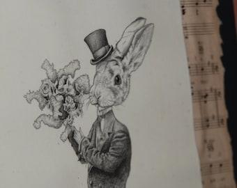 Vintage - Pencil Sketch Print - Mr.Hare