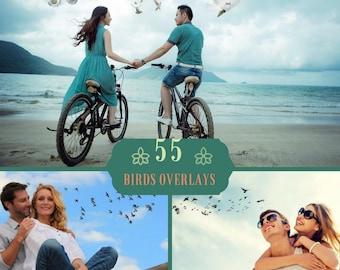 55 Birds Overlays PNG, Doves Photoshop Overlays, Wedding Overlay, Flying Birds photo layer, Flying Birds, Digital backdrop, Pigeons Overlay