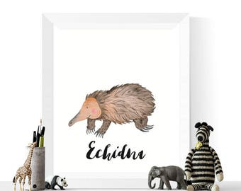 Australian Animal | Echidna Printable Art | Echidna Watercolor Printable | Australian Animal Prints | Echidna Print