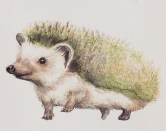 Heatherhog