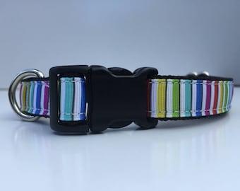 Rainbow Stripe's dog collar