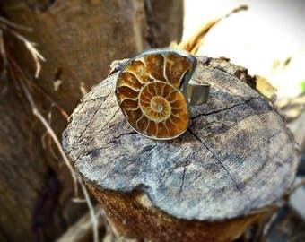 silver ammonite ring adjustable spiral fossil ring 2017