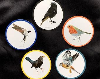 5 Fridge Magnets_set3 Bird print high quality paper