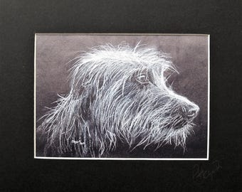 Mounted Print of a Lurcher