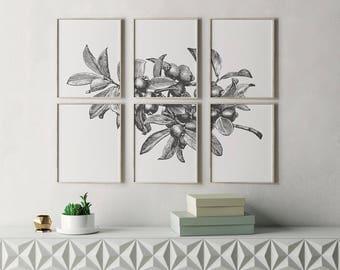 Botanical Prints, Botanical Print Set, Botanical Art, Botanical Wall Art, Botanical Art Prints, Modern Wall Art, Contemporary Wall Art