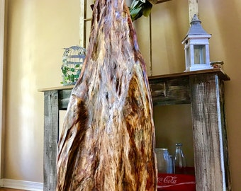 Beautiful Lighting struck tree slab