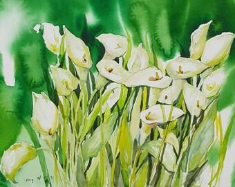 Calla Lillies, Watercolor