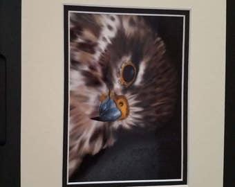 Untitled bird