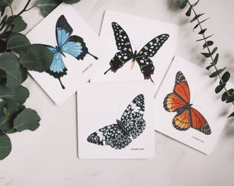 Butterfly Drink Coaster Set
