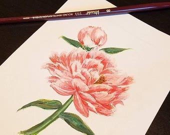 Watercolor Pink Peony Flower Print