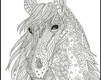 horse coloring page for adults horse adult coloring page printable coloring page horse