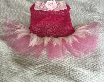 Pink lace with lace and antique feathers