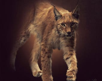 Digital painting Lynx