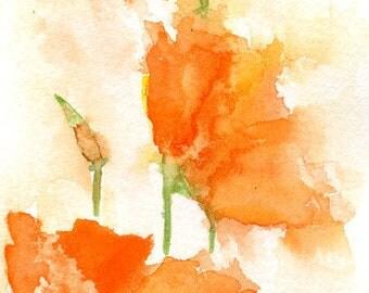 Watercolor California Orange Poppies,  Original Painting, Poppy Art, Poppy Decor