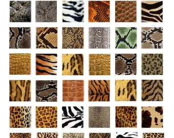 Animal Prints - 1x1 Inch - Digital Collage Sheet - Instant Download