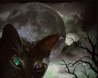 Black Cat and the Moon - 5x7 - Instant Download