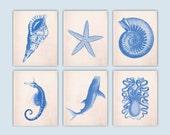 RESERVED Whale-shark , Star, Octopus, Sea horse, Sea creatures Prints, Nautical art, Ocean Nautical Prints, coastal living, Set 6 blue print