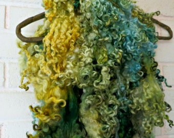 Teeswater Wool Fleece - Curly Locks - Yellow, Green, Pale Blue Hand Dyed Wool - Spinning - Felting - Lemon Balm and Rosemary