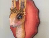 Bunny Rabbit Mounted Head