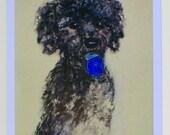 ON SALE Black Toy Poodle with Dreidel Dog Art Hanukkah Cards By Cori Solomon