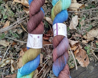 Lorna's Laces hand dyed sock yarn in Edgewater