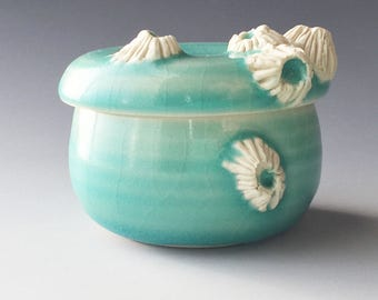Salt Cellar Covered Jar with Barnacles