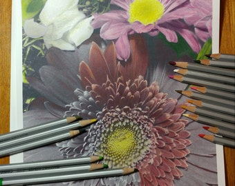 Gerbera Daisy and Snapdragon Greyscale Coloring Page and tutorial