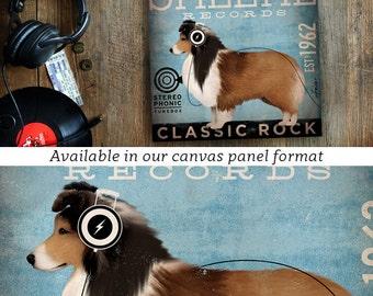 Sheltie Shetland Sheepdog dog Records vintage style dog album artwork illustration on gallery wrapped canvas by Stephen Fowler