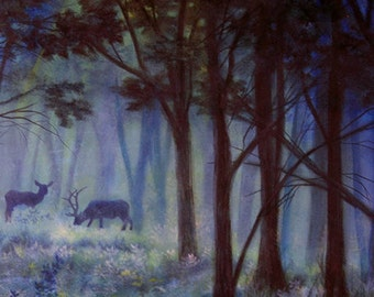 Deer in the Woods - Fine Art Print