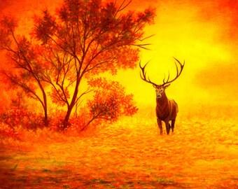 Majestic Sunset - Fine Art Print