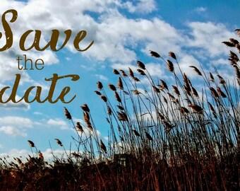 Save The Date Postcard, Brown Beach Sea Grass, Save The Date Postcard, Wedding Save the date postcard