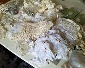 Huge Lot of Cream White and Ivory Embellishments, Velvet Roses, Lace Appliques, Lamp Shades, Craft Destash