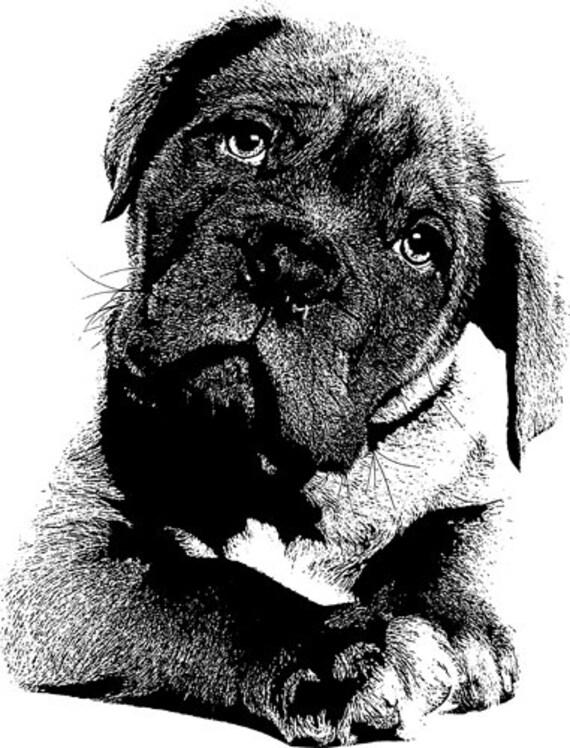 boxer puppy dog clipart png jpg clip art printable animal pets illustration black and white art digital stamp download graphics images