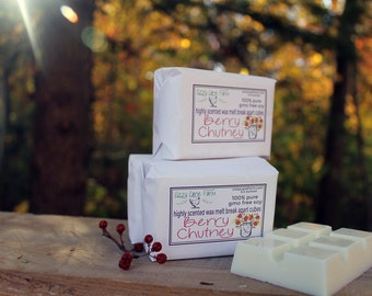 Berry Chutney Soy Wax Melts   Scented Wax Melt   Wax Tart   Fall Winter Tarts   Fruity, Spicy   2 pack HUGE 5.5 oz breal apart bars