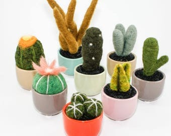 Miniature Felted Cactus in Colorful Succulent Cup (Choose your Needle Felted Plant)