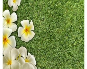 Grass G5-Digital Download-Dark Grass-Grass Background-Gift Card-Scrapbook-Digital Clipart-Green Grass.