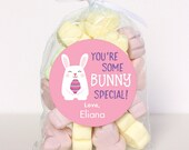 """Easter Stickers - """"You're Some BUNNY Special"""" (Pink) - Sheet of 12 or 24"""