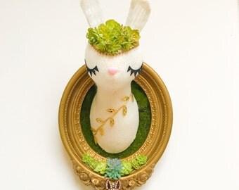 Bunny Faux Taxidermy