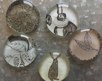 Rabbits in the Garden set of five Glass Magnets