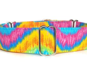 Martingale Dog Collar,,, Heat Wave,,bright, multi colour Martingale Dog Collar in 1.5 inch or 2 inch width