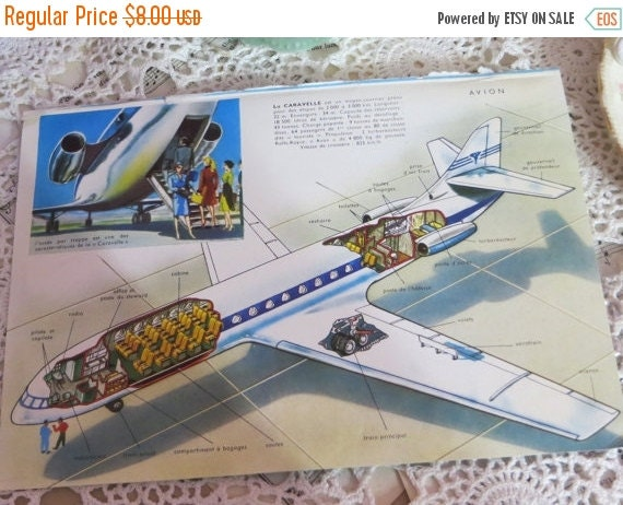 ON SALE Reference-Audubon-Book Plates-French-Airplane-Avion