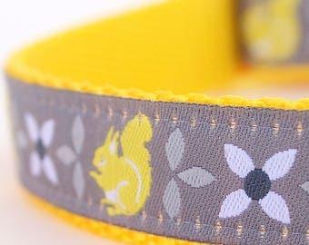 Yellow Squirrel Dog Collar, Adjustable Dog Collar, Ribbon Dog Collar