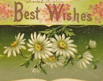 Summer Daisies on Embossed Vintage Postcard Best Wishes - Rich Colors and Suitable From Framing