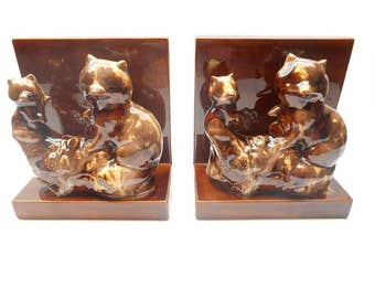 Vintage Raccoon  Bookends