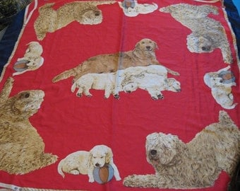 Large Scarf DOGS Puppies Golden Retriever Golden Labrador Retriever Golden LabraDoodle Show Dogs Kennel Club Breeder