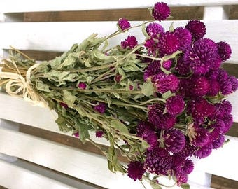 DRIED FLOWERS bouquet Purple Globe Amaranth Flower Bouquet GOMPHRENA flower bunch Prim Wedding Shabby cottage floral Dried flower bunch folk