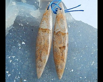 New,Indonesian Fossil Coral Gemstone Earring Bead,49x10x4mm,6.2g