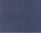Sunday Supper American Blue Grandmas Gingham 5653 12 by Sweetwater for Moda