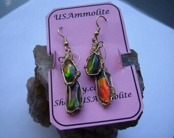 Bright Red with Some Green Ammolite from Utah Deposit Pebble Double Dangle Earrings Wire Wrapped in Gold Filled Wire 536